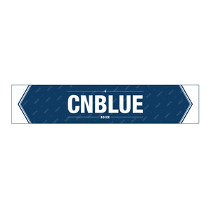 [CNBLUE] BLISH ver.3